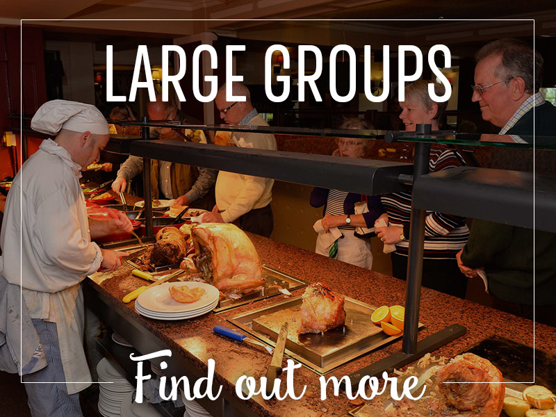 Large Groups