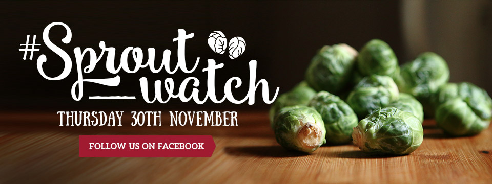 #Sproutwatch at Toby Carvery